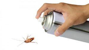 Insecticida para Cucarachas