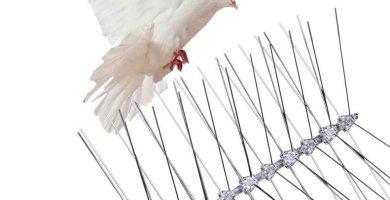 pinchos para palomas