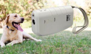 Ahuyentadores para perros
