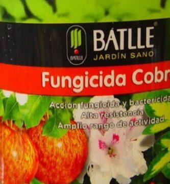 Fungicida cobre